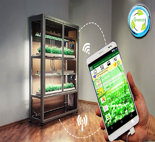 Students use smartphone app to cultivate clean vegetables