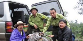Các cán bộ kiểm lâm cùng chú voọc chà vá trước khi thả về rừng ((Ảnh: http: luutruvn.gov.vn))