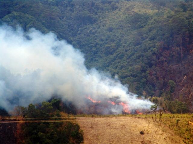Tây Nguyên: 3 tháng đầu năm cháy gần 1.000ha rừng