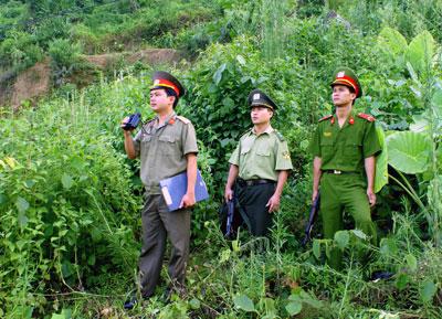 Bắc Kạn: Khó khăn giữ rừng vùng giáp ranh ở Pác Nặm