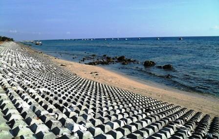 Cấp bách cứu bờ biển Cà Mau và Bạc Liêu