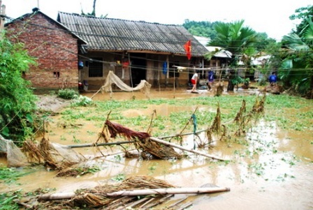 Mưa lớn gây thiệt hại ở nhiều tỉnh