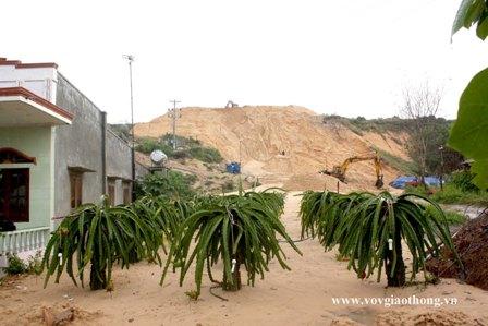 Đình chỉ hoạt động Công ty khai thác ti tan để cát thải tràn vào nhà dân