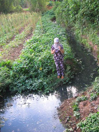 Huế: Dân khổ vì nhà máy rượu gây ô nhiễm