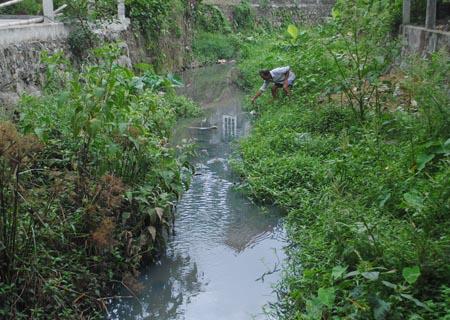 """Huế: Nước thải nhà máy dệt """"hành"""" dân"""