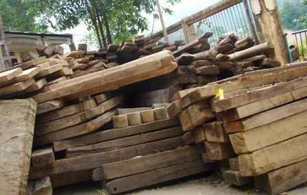 Đề xuất cơ chế quản lý gỗ nhập khẩu từ Lào