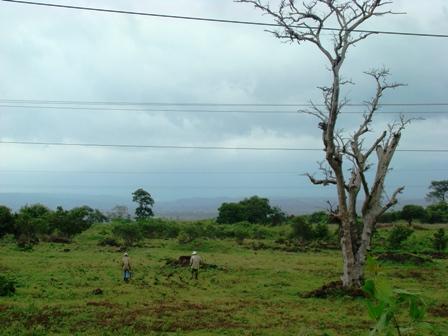 Đắk Lắk thu hồi hơn 100 ha đất sử dụng kém hiệu quả