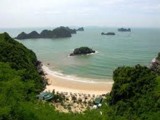 Bảo tồn động thực vật vịnh Hạ Long trên đảo Soi Sim