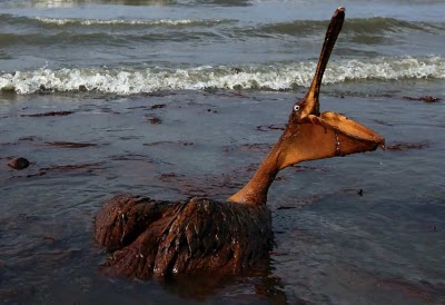 BP và vụ tràn dầu vịnh Mexico sau 2 năm nhìn lại