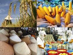Mở rộng Dự án cạnh tranh nông nghiệp tại các tỉnh ĐBSCL