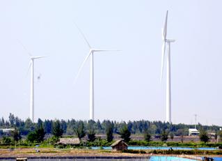 Sắp vận hành nhà máy điện gió biển đầu tiên ở Việt Nam