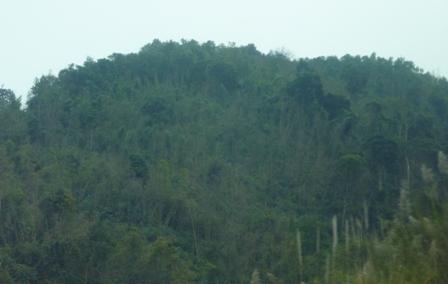 Kon Tum tăng cường quản lý, bảo vệ rừng Kon Plông