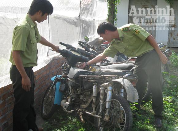 """Cam go """"Cuộc chiến giữ rừng ở Khu bảo tồn thiên nhiên Ea Sô! – Kỳ 2"""