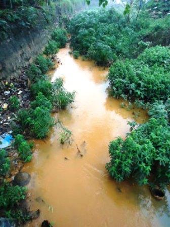 Nước thải độc hại xả trực tiếp ra kênh Bờ Rum.