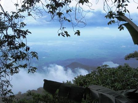 Một góc của Vườn Quốc Gia Ba Vì (Ảnh: Nguyễn Bích)