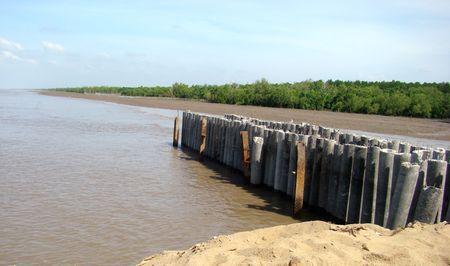 Kè chắn sóng ở Cà Mau (Ảnh: ThienNhien.Net)