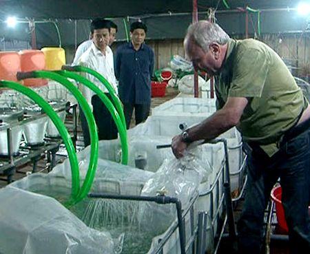 Dự án đưa trứng cá tầm về nuôi ươm trên vùng lòng hồ thủy điện Tuyên Quang tại huyện vùng cao Lâm Bình