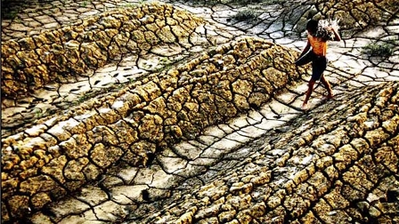 LHQ kêu gọi thế giới chống hạn hán và sa mạc hóa