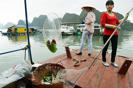 Bất kể trời mưa hay nắng, cứ có rác là Hợi và Hằng đều lên thuyền đi vớt.