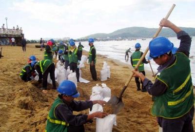 Thu gom hơn 50 tấn dầu tràn vón cục lẫn trong cát