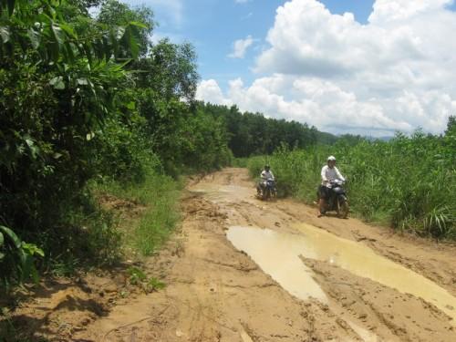 Đường dẫn vào địa điểm khai thác rừng ở tiểu khu 79 (Ảnh: Minh Ngọc/Báo Giáo dục & Thời đại)