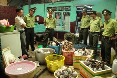 Tham nhũng tạo cơ hội cho buôn lậu động vật quý hiếm