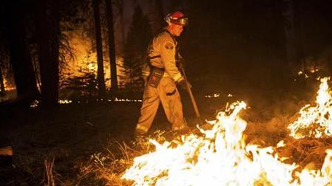 Cháy rừng lan rộng ở vườn quốc gia Yosemite, Mỹ
