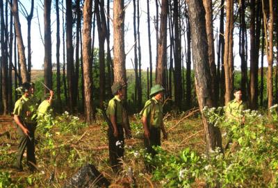 Lực lượng kiểm lâm Đắc Lắc tuần tra bảo vệ rừng