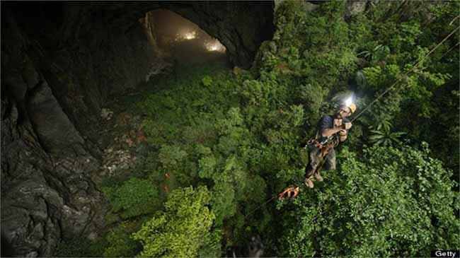 Thảm thực vật xanh mướt bên trong hang động