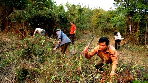 Đồng bào dân tộc thiểu số, người miền núi sống dựa chủ yếu vào rừng (Ảnh: Dân Việt)