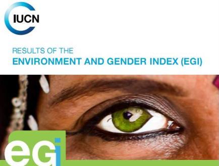 Chỉ số Môi trường và Giới (Nguồn: IUCN)