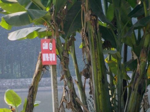 """Tấm bảng bằng chữ đỏ ngay trước cổng Công ty Phú Hà - """"Cấm quay phim chụp ảnh"""" - hòng che giấu sự việc, tránh sự kiểm tra của cơ quan chức năng và giám sát của nhân dân địa phương (Ảnh: Báo Tin tức)"""