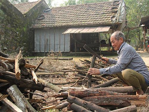 Đã ở tuổi 84 nhưng ông Lán vẫn sống một mình để bảo vệ đê biển xanh (Ảnh: Nguyễn Xuân Hùng/nld.con.vn)