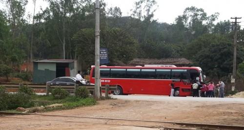 Xe chở khách du lịch tới trại gấu Trường Thịnh (Ảnh: ENV)