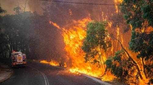 Một đám cháy rừng lớn tại Australia (Ảnh: AFP)