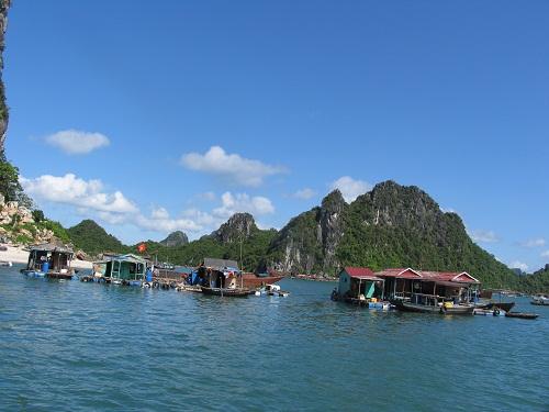 Ảnh minh họa: Nguyễn Việt Dũng/PanNature