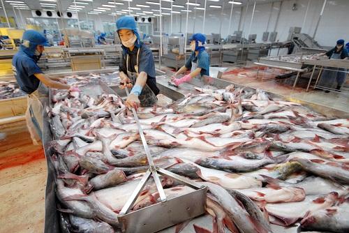 Quy định của Hoa Kỳ ảnh hưởng tới thủy sản Việt Nam
