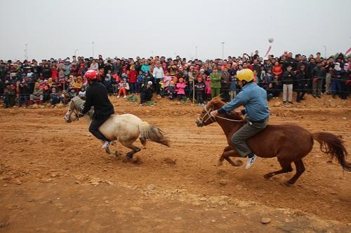 Cuộc đua giữa các chú ngựa diễn ra vô cùng quyết liệt, hấp dẫn (Ảnh: Trần Đình Hà)