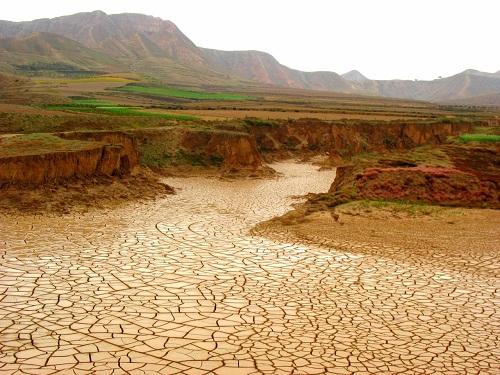 Ảnh minh họa: earthfirstjournal.org