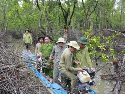 Tuần tra, khắc phục nạn phá rừng Vườn quốc gia Mũi Cà Mau (Ảnh: Nhân dân)