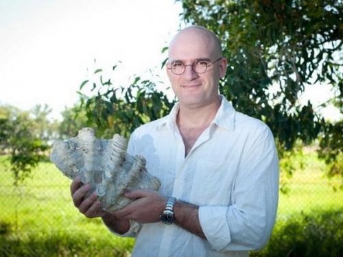 Loài sò mới được phát hiện (Ảnh: ABC)