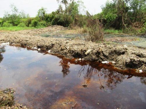 Hơn 500 tấn axít chảy tràn ra kênh thủy lợi ở Bình Chánh đến nay vẫn chưa có giải pháp xử lý cụ thể (Ảnh: Một Thế Giới)