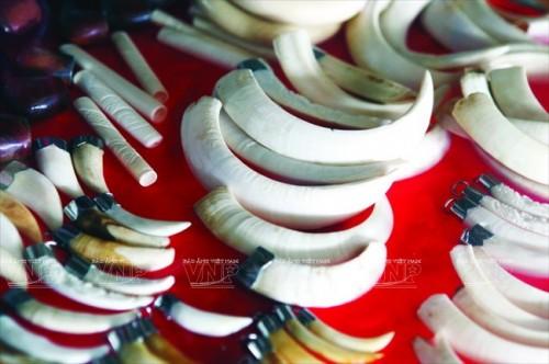 Những món quà lưu niệm từ voi như: ngà, xương và lông đuôi voi vẫn ngang nhiên được bày bán ở Bản Đôn (Ảnh: Báo ảnh Việt Nam/Vietnam+)