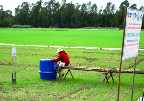 Đo khí thải trong dự án trồng lúa giảm khí thải (Ảnh: nongnghiep.vn)