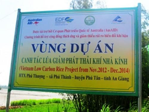 Dự án trồng lúa giảm khí thải (Ảnh: nongnghiep.vn)