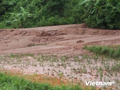 Đất, đá từ bãi quặng Nà Rụa vùi lấp đất canh tác của người dân (Ảnh: Hùng Võ/VietnamPlus)