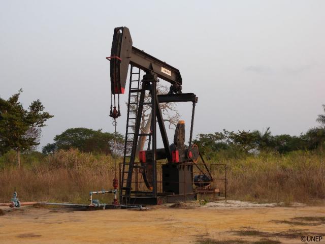 Đa dạng hóa nền kinh tế để giảm phụ thuộc tài nguyên