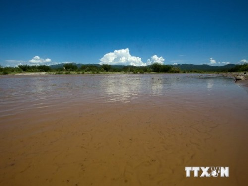 Một đoạn sông Sonora bị ô nhiễm (Ảnh: AFP/TTXVN)