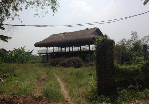 Nhà sàn bỏ hoang, cỏ mọc um tùm tại một khu sinh thái