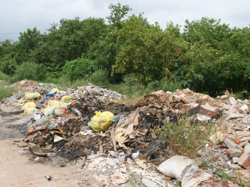 Bên cạnh vườn ổi là những bãi rác thải, ô nhiễm